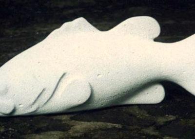 2005 Barramundi. Hebel Stone. 60cm long