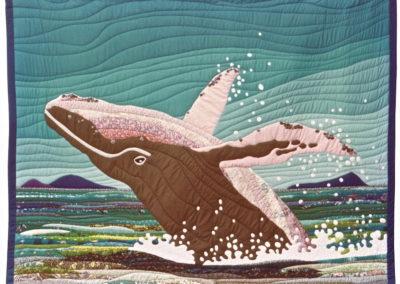 Breaching in the Whitsundays 1985