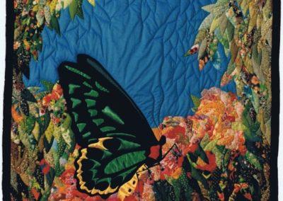 Bryony's Birdwing 1987