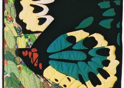 Mr & Mrs Birdwing Butterfly 1994