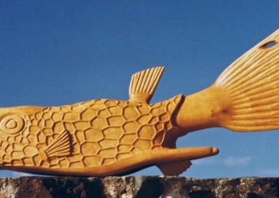 1984 Long-Horned CowFish. White Beech. 132cm long