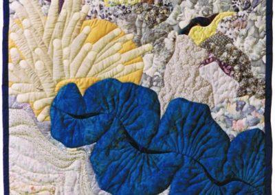 Blue Clam 1996