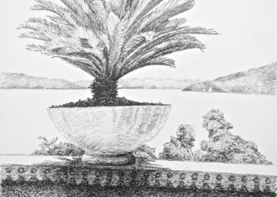 Villa Botanica 2009