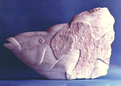1987 Hump-Headed Maori Wrasse. Chillagoe Marble. 94cm long