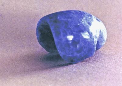 1988 Nautilus. Chillagoe Marble. 11cm long
