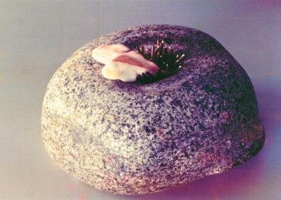 1989 Anemone. Chillagoe Marble, Bronze Brazing Rod, Granite. 16cm high