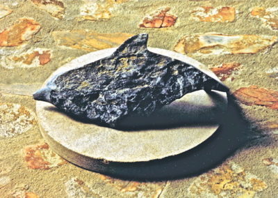 1992 Dolphin. Chillagoe Marble. 40cm long