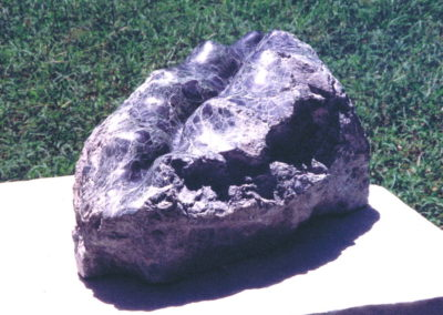 1994 Clam. Kilkivan Serpentine. 27cm long