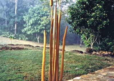 1995 The Visitor. Hoop Pine, Moreton Bay Ash, Blue Gum, with Burdekin Plum Bird. 135cm high