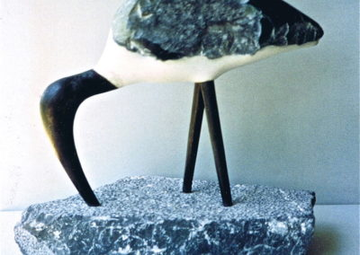 1995 Ibis. Bajool Marble with Basalt Intrusion, Chillagoe Marble base. Bronze Beak and Legs. 46cm high