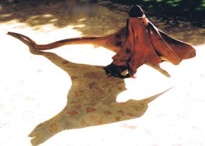 1999 Frilly Lizard. Red Cedar. 260cm long