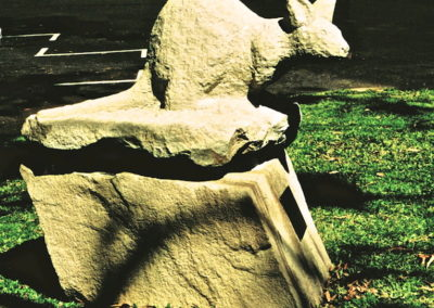 2001 Bridled Nailtail Wallaby. Saraji Sandstone. Coast to Coal Centenary of Federation Sculpture Symposium. Assisted by Elaine Cruck.