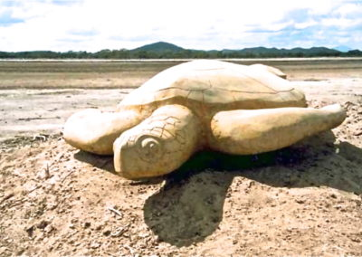 2004 Green Sea Turtle. Concrete over Aluminium wire armature, coloured. Commissioned by Queensland Parks and Wildlife Service for Indigenous Community at Cape Upstart. 210cm long