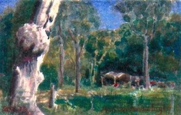 'Long Grass'