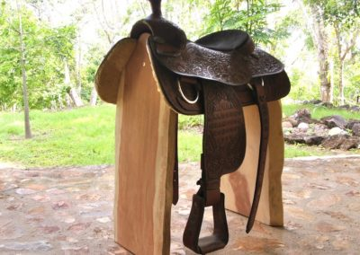 Saddle Stand with Trophy Saddle