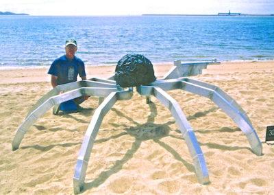 2005 Soldier Crab. Exhibited at 'Strand Ephemera' Townsville Qld