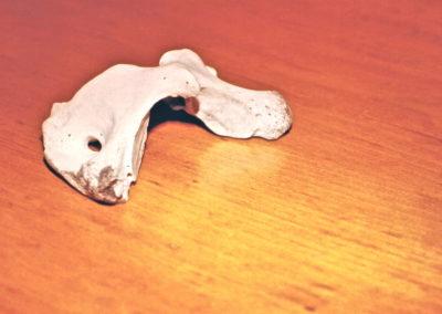 1976 Bone Polar Bear. Cow Bone. 13cm long