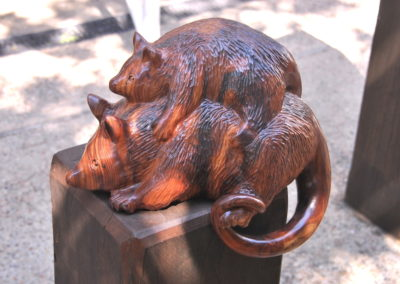 2013 Possums. Camphor Laurel. Commissioned by Mackay Entertainment Centre. 30cm high