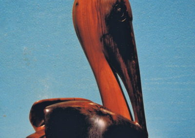 1996 Pelican. Burdekin Plum. 44cm high