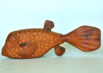 2006 Box Fish. Osage Orange (Mock Orange). 45cm long