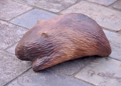 1990 Wombat. Burdekin Plum. 27cm long