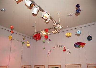 Perc Tucker Regional Gallery 2008