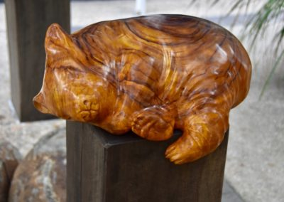 2017 Wombat. Camphor Laurel. Commissioned by Mackay Entertainment Centre, Mackay Qld. 40cm long